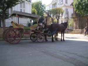 Picture of a horse-drawn carriage on the Princes' Islands in Istanbul, Turkey.