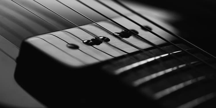 Strings of a guitar.