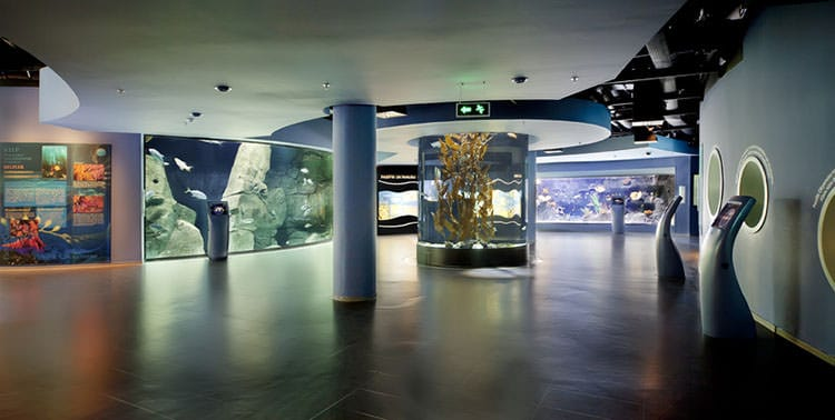 Istanbul Aquarium in Florya is a special attractions in Istanbul, Turkey.