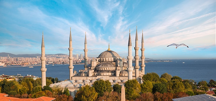 Aerial view of the Blue Mosque or Sultanahmet Mosque